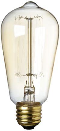 25 Watt Edison Style Decorative Light Bulb - #6T563 ...