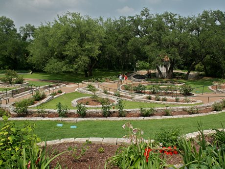 landscaping ideas austin