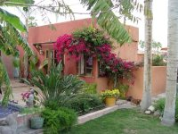 Mexican Garden Design Ideas - Landscaping Network