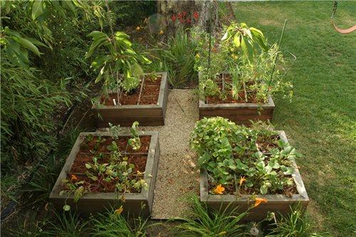 Triyae Com = Backyard Raised Garden Designs Various Design