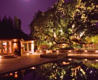 Backyard Lighting - Landscaping Network