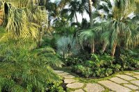 Key West Pool & Tropical Garden - Landscaping Network