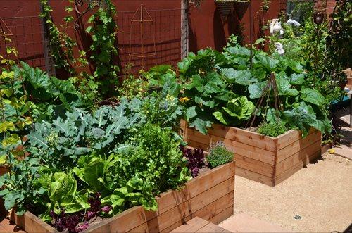 Garden Landscaping Design Landscaping Network