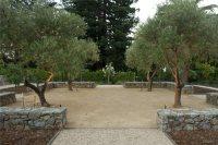Mediterranean Backyard Landscaping - Landscaping Network