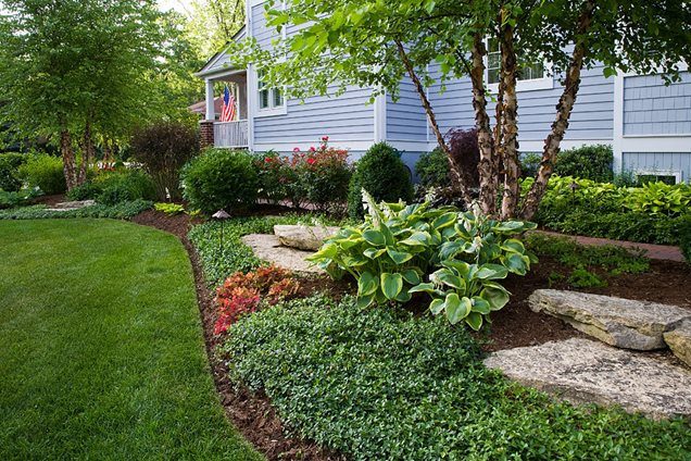 Spring Garden Ground Cover Detail Traditional Landscape New Create