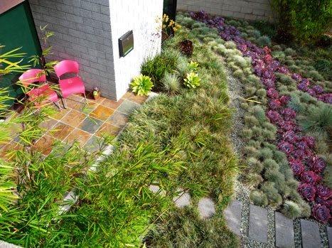 modern landscaping - ventura ca