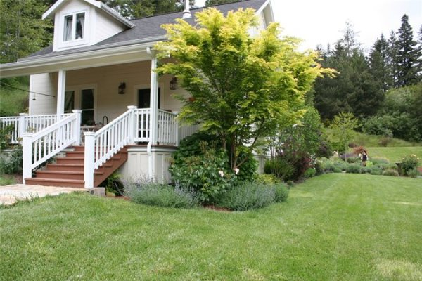 front yard curb appeal - landscaping