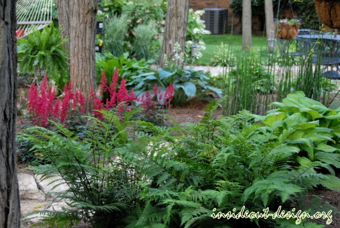 Woodland Garden Design Garden ideas and garden design