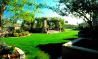 Arizona Landscaping - Phoenix, AZ - Photo Gallery ...