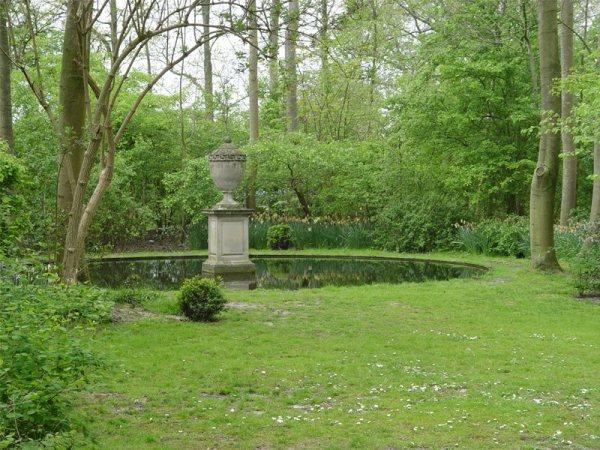 backyard landscaping - morongo