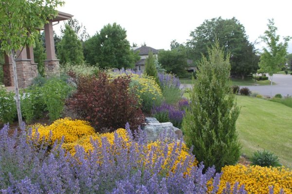 colorado landscaping - longmont