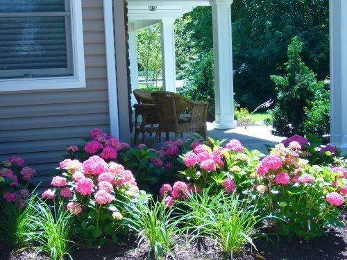 front porch - massapequa ny