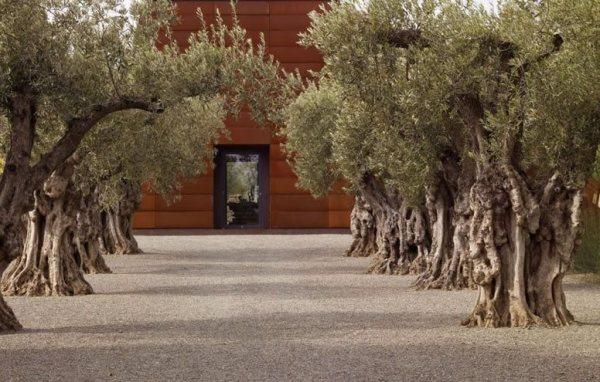 garden design - san francisco