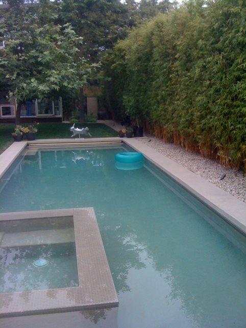 simple swimming pools - calimesa