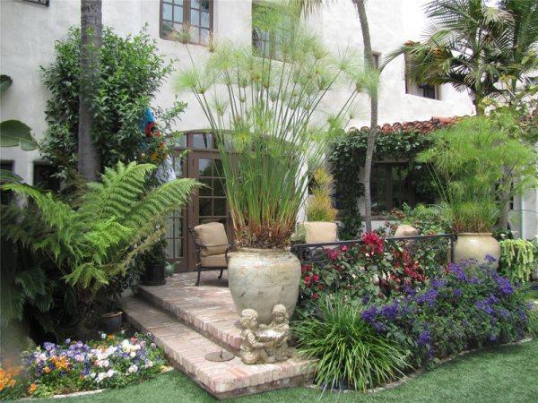 tropical landscaping - calimesa