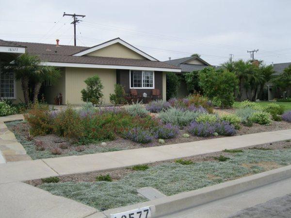 xeriscape landscaping - tustin