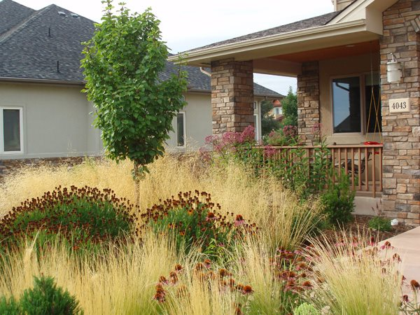 xeriscape landscaping - longmont