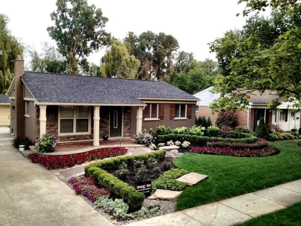 front yard & afters - landscaping