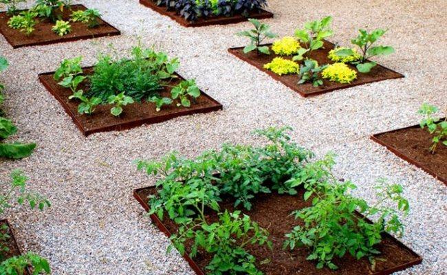 Landscaping Tucson Landscaping Network