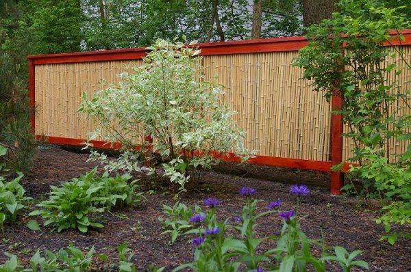bamboo fences - landscaping network