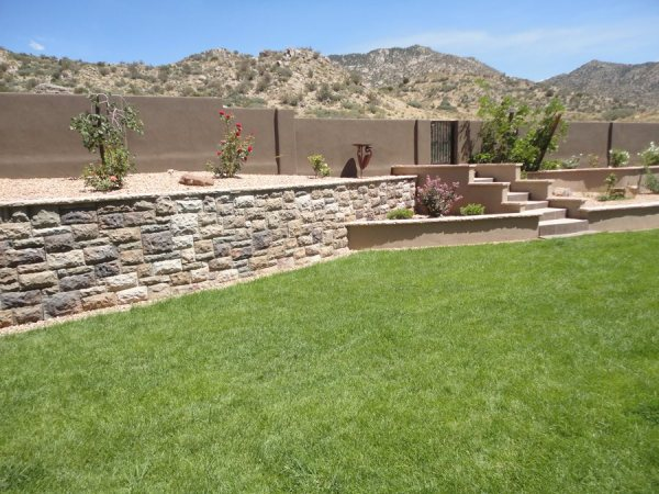 lawn grasses landscaping