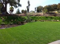 Cost to Install & Maintain a Lawn - Landscaping Network