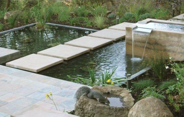 modern pond design - landscaping