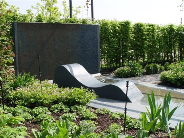 planting privacy screen - landscaping