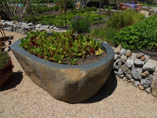 landscaping rocky soil