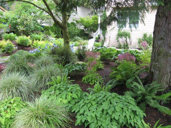 northwestern shade garden - landscaping