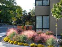 Southwest Garden Design - Landscaping Network