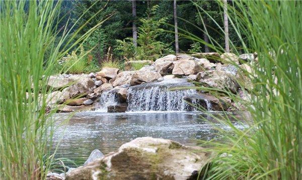 garden pond design ideas - landscaping