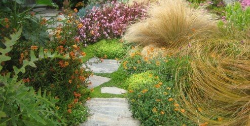 Tuscan Garden Tips Landscaping Network