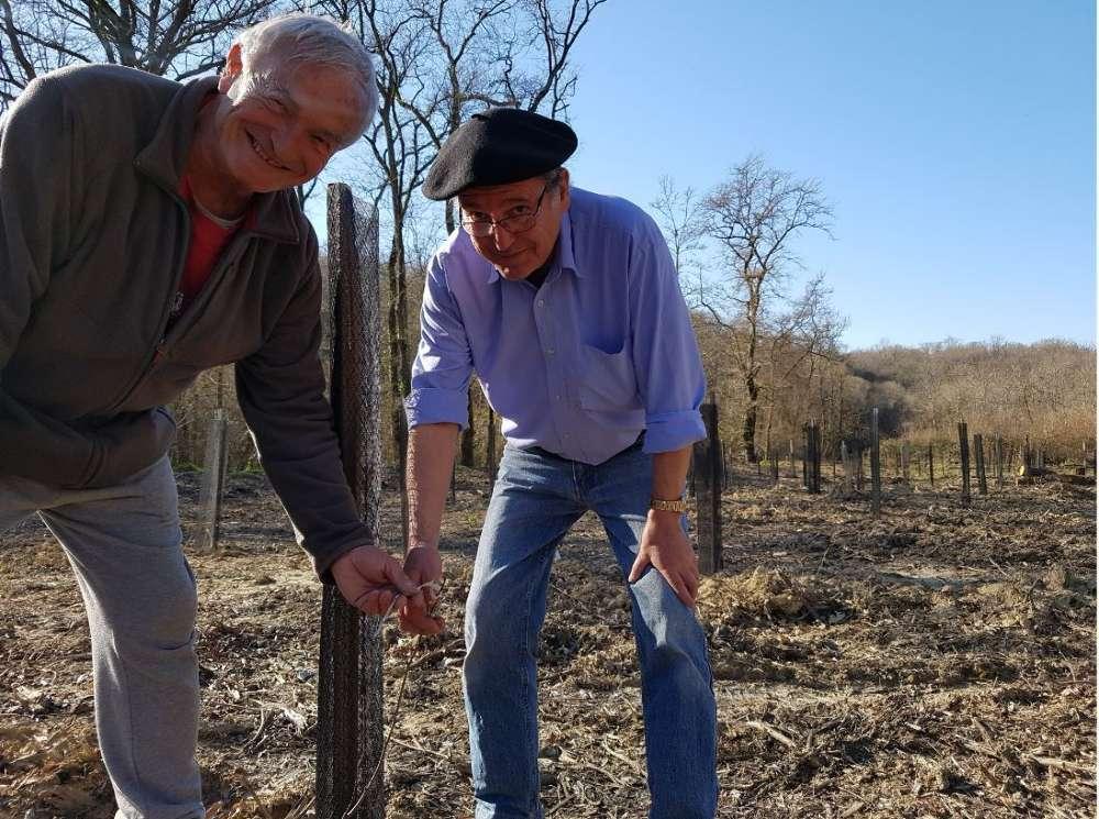 Passionné par le bois, Pierre Traucou est venu aider Alain Abadie à entretenir sa future forêt à Noguères.