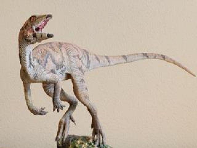 New Dinosaur in Venezuela the Size of 'Small Dog'