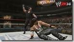 WWE (17)