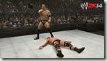 WWE (22)
