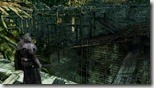 Dark Souls 2 (2)