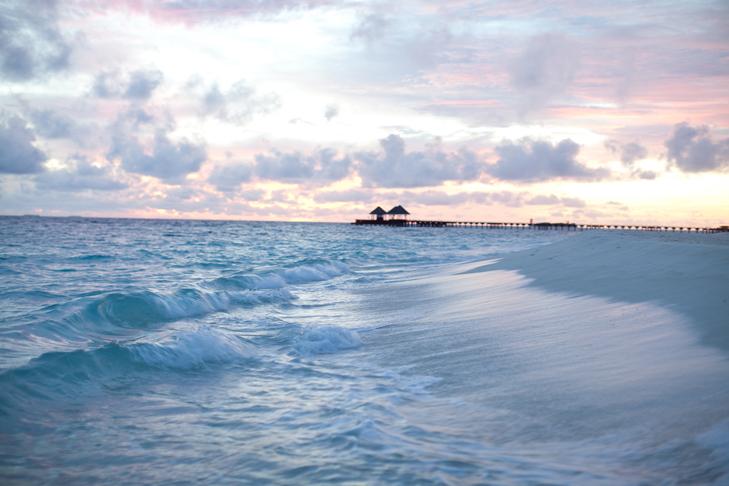 Maldives (26)
