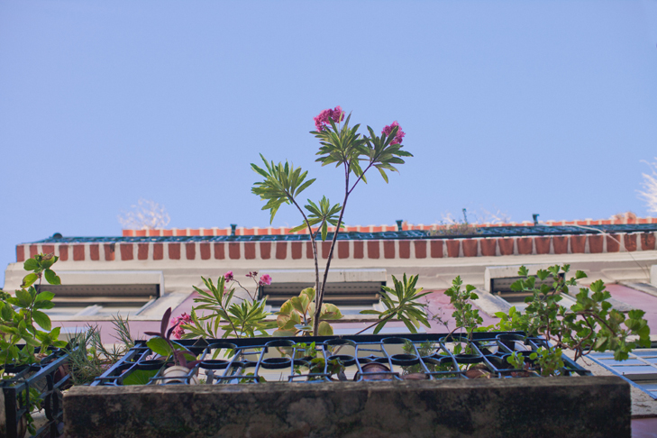 Lisbonne (99)