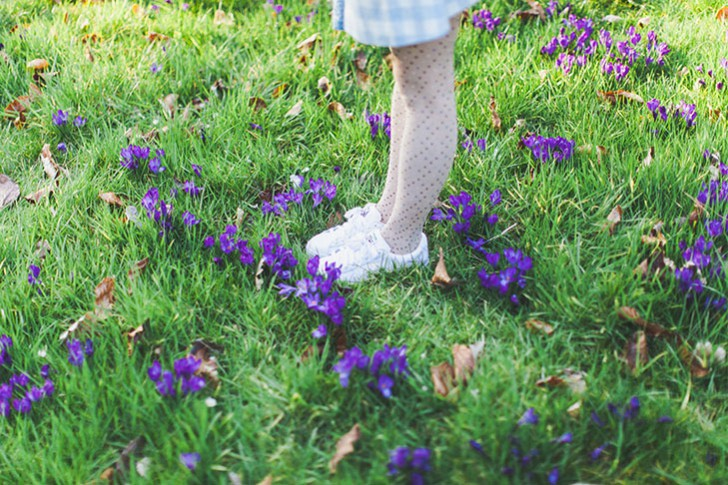 Parc floral de Vincennes-29
