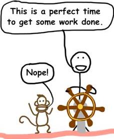 monkey-gratification