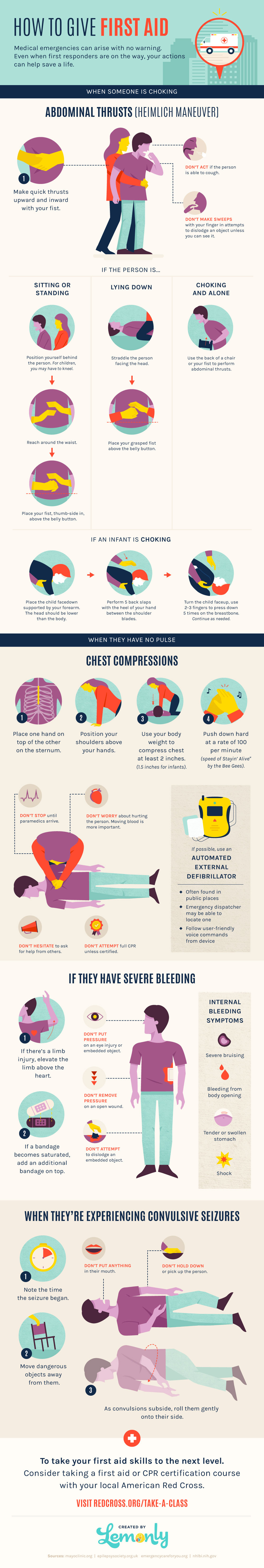 How to Give First Aid Infographic - Lemonly