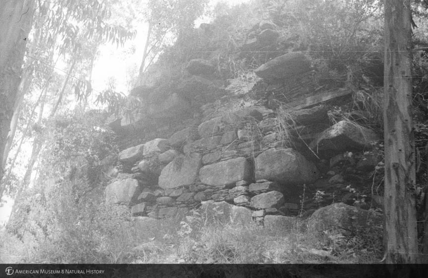 AMNH Research Library | Digital Special Collections | Chullpa. ruins. Wilkawain. Peru. 1938
