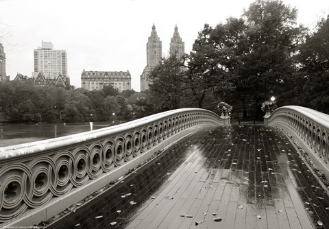 Bow Bridge 2010 by Christopher Bliss