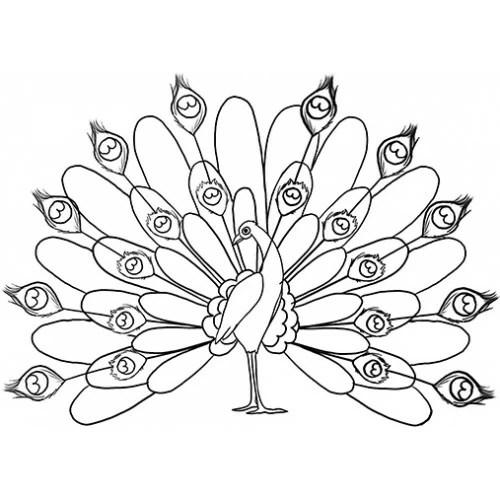 Peacock Cardboard Coloring Cutout