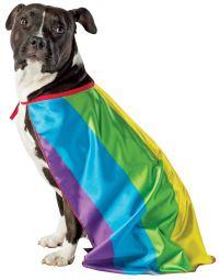 Rainbow Dog Flag Cape Dog Costume | eBay