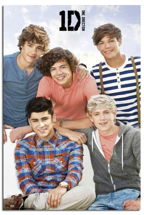 Maxi Poster 61cm x 91.5cm new /& sealed Niall One Direction