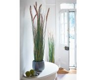 Bloom 5Ft Potted Grass Tall 150Cm Artificial Plant Home ...