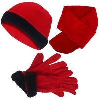 New Ladies Micro Fleece 3 Pc Beanie Hat Scarf Gloves Women ...